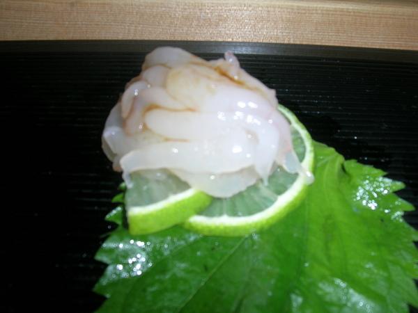 白蝦.JPG